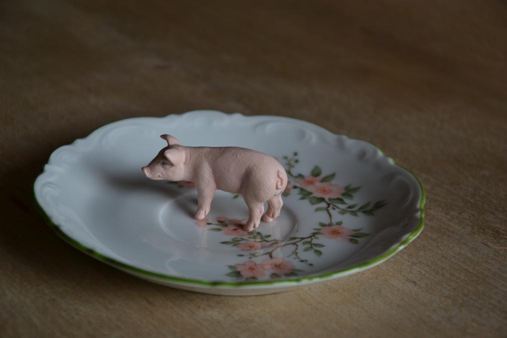 schweinchen auf teller4